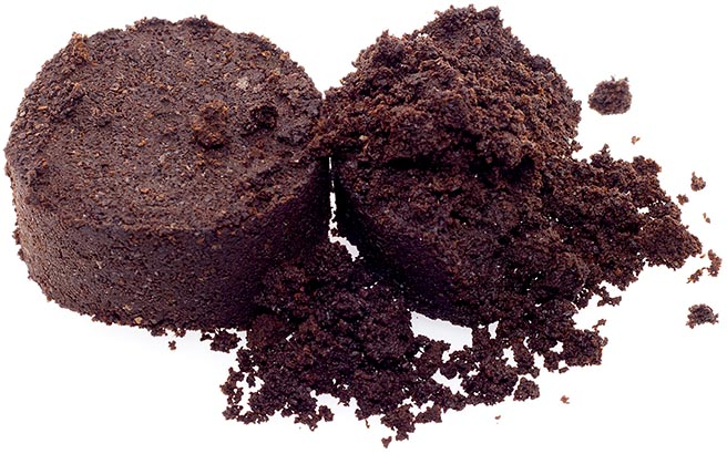 It is Coffee grounds isolated on white.